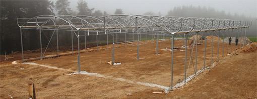bâtiments d'élevage en tunnel : Les éleveurs du Gaec de Keramel au Vieux Bourg montent eux-mêmes leur futur bâtiment dédié aux génisses, avec une assistance technique de 5 jours de la marque Filclair.