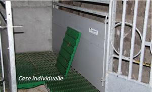 Il a été inventé et conçu en collaboration avec des spécialistes en bâtiment d'élevage pour assurer la bonne santé des veaux. Visuel case individuelle