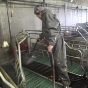 Nettoyage haute pression des caillebotis au Gaec du Breuil nettoyeur HP Hydroclean