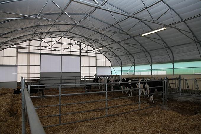 Des tunnels existent aussi pour l'élevage comme cette nursery montée avec Cultivert en 2013.
